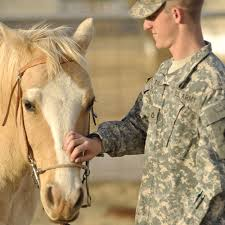 soldier with horse